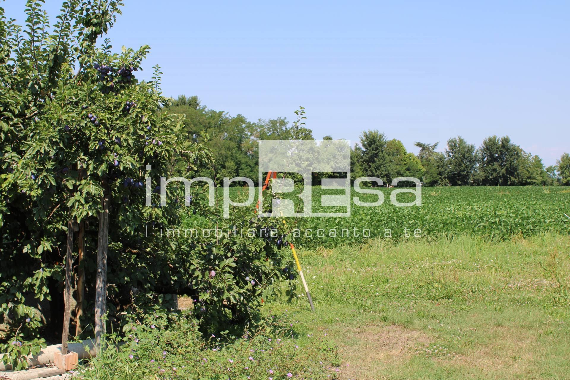 Terreno Agricolo in Vendita a Mogliano Veneto