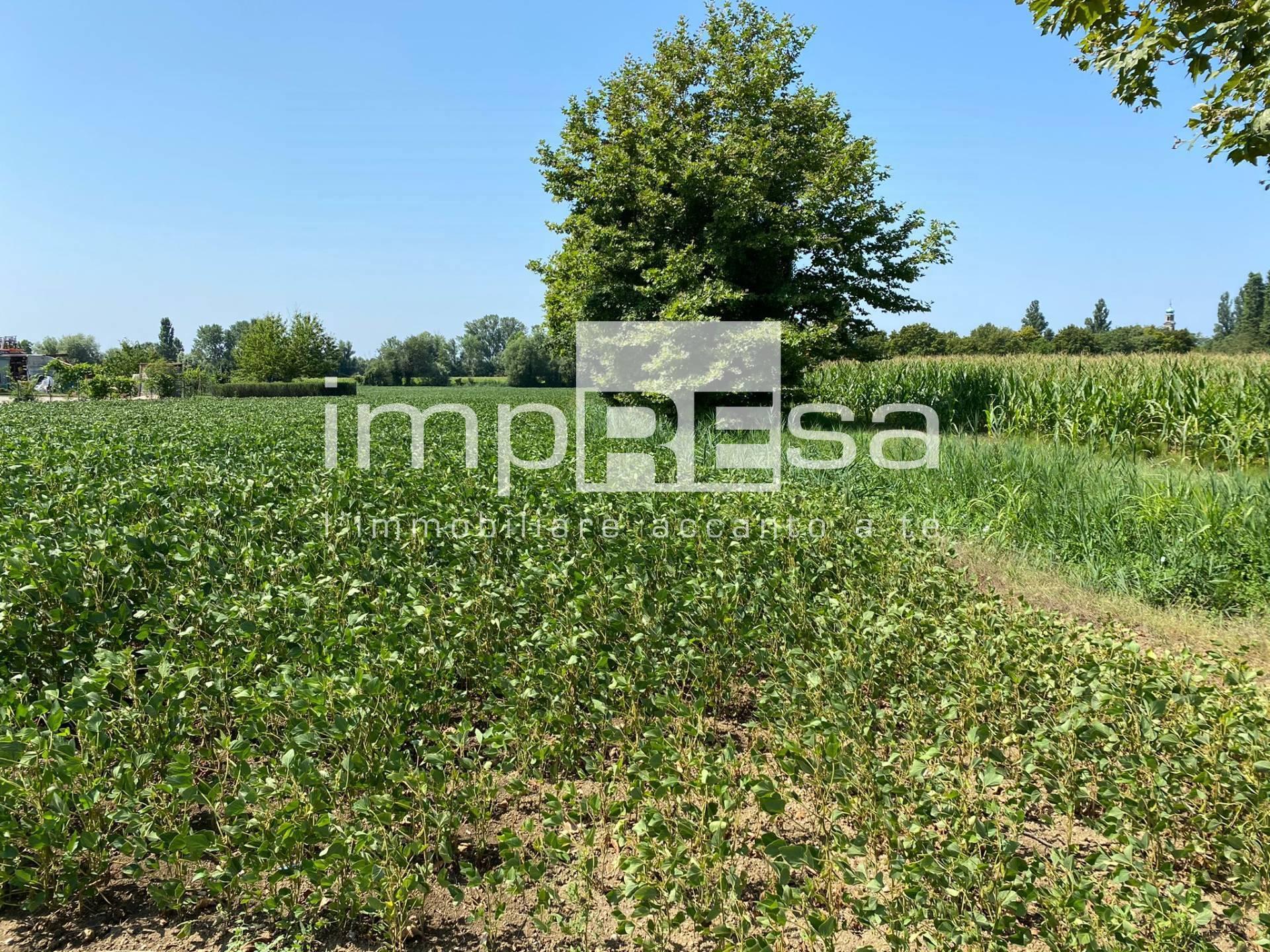 Terreno Agricolo in vendita a San Biagio di Callalta, 9999 locali, zona Zona: Spercenigo, prezzo € 165.000   CambioCasa.it