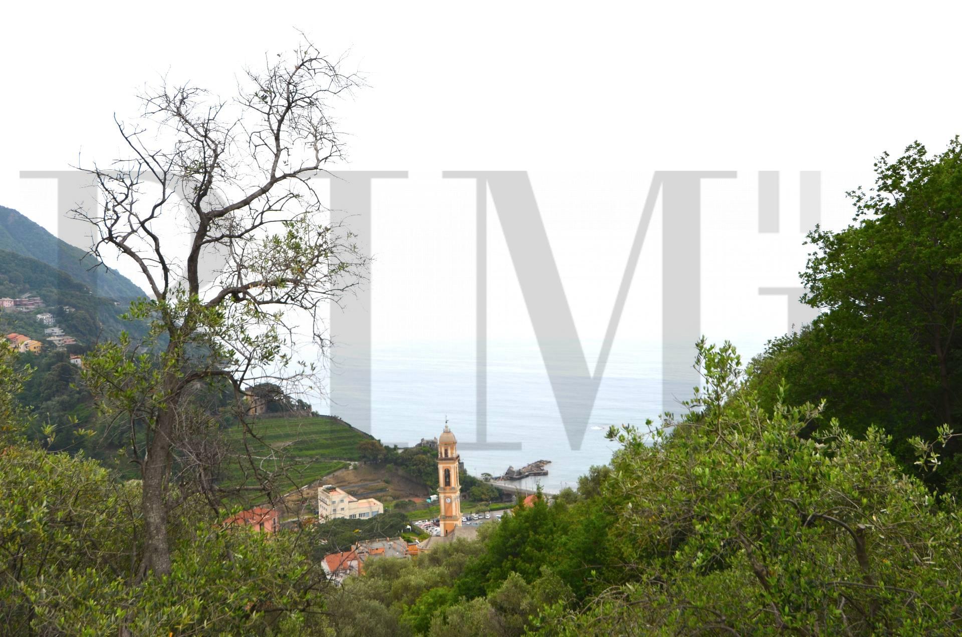 Terreno Agricolo in vendita a Moneglia, 9999 locali, prezzo € 70.000 | CambioCasa.it