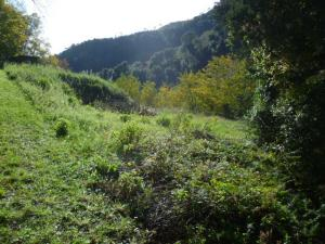 Terreno edificabile in Vendita a Varazze