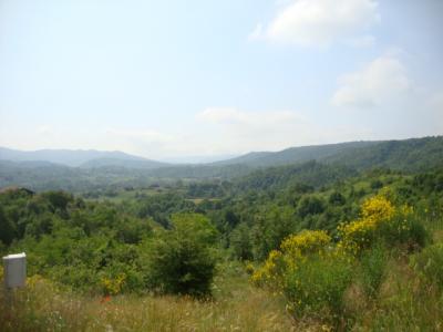 Terreno con progetto approvato in Vendita a Mioglia