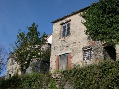 Complesso Rurale in Vendita a Lavagna