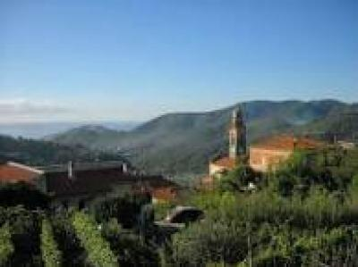 Terreno con progetto approvato in Vendita a Tovo San Giacomo