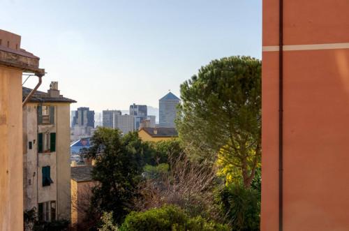 Vai alla scheda: Appartamento Vendita - Genova (GE) | Centro Storico - Codice GEF489