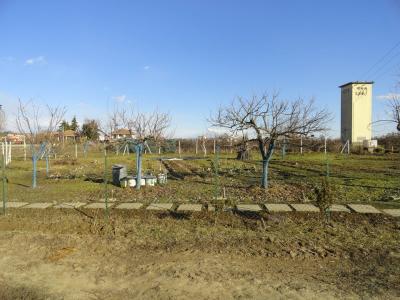 Terreno Agricolo in Vendita a Caluso