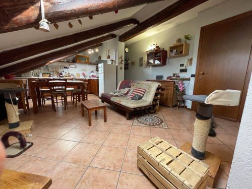 in Kauf bis Gassino Torinese