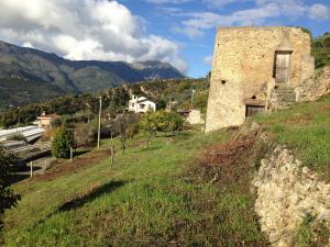 Vai alla scheda: Terreno  Residenziale Vendita Ventimiglia