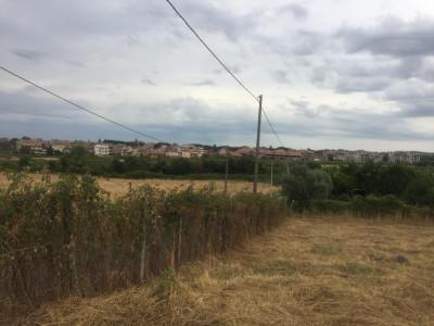 Terreno edificabile in Vendita a Marino
